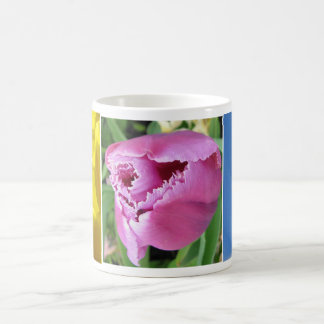 Taza Morphing de 3 tulipanes