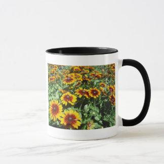 taza Negro-observada de la caída de Susan