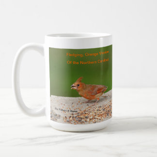 Taza o stein con el cardenal septentrional varient