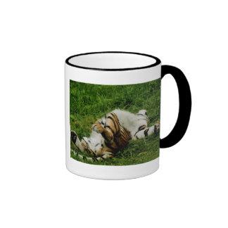 Taza perezosa del tigre del día
