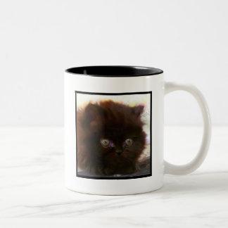 Taza persa negra del gatito