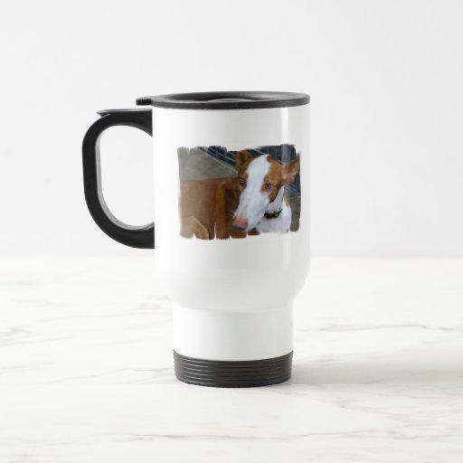 Taza plástica del viaje del perro de Ibizan