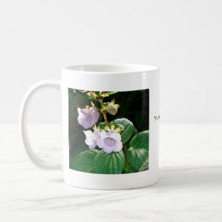 Taza púrpura de la orquídea de Fiji