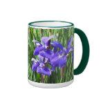 Taza púrpura de los iris