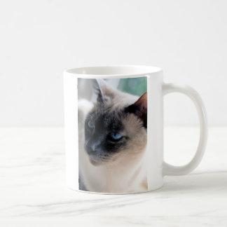 Taza reservada I del gato siamés