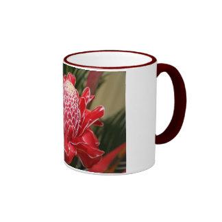 Taza roja de la flor del jengibre de la antorcha