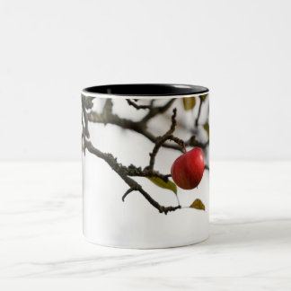 Taza roja de las manzanas