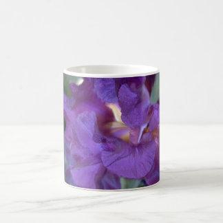 Taza Rojizo-púrpura profunda del primer del iris