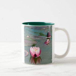 Taza rosada bonita de Waterlily