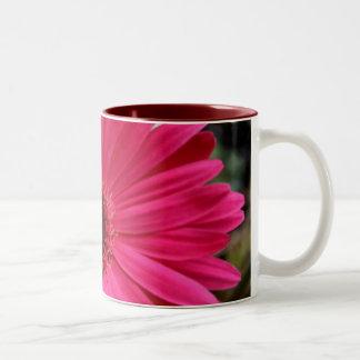 Taza rosada de la margarita del Gerbera