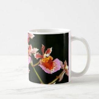 Taza rosada de las orquídeas