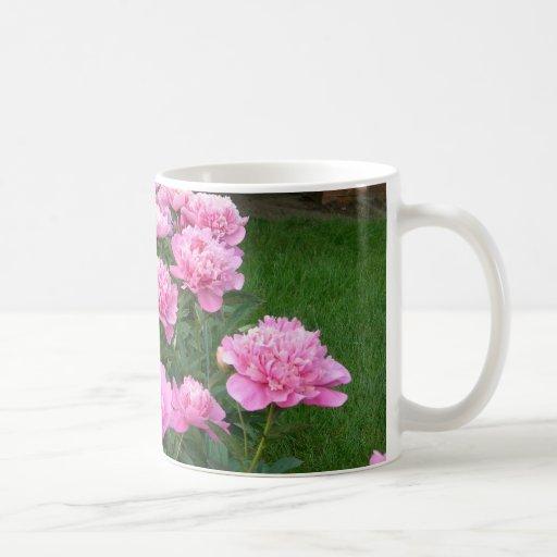 taza rosada del peony