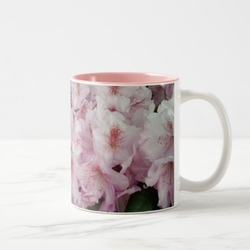 Taza rosada del rododendro