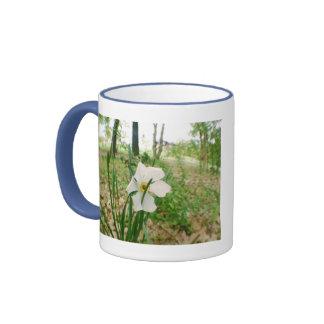 Taza solitaria de la flor