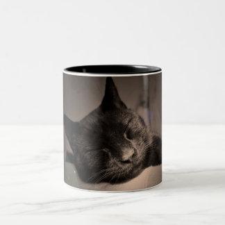 Taza soñolienta del gato negro