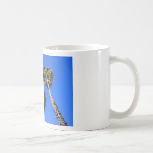 Taza tropical de las palmeras