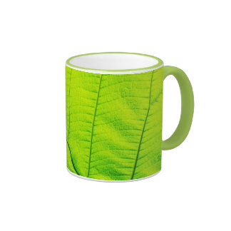 Taza verde macra de la hoja