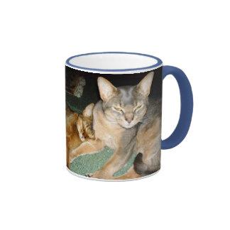 Tazas abisinias del gatito y del gato