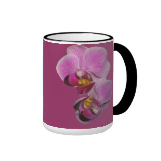 Tazas de la orquídea