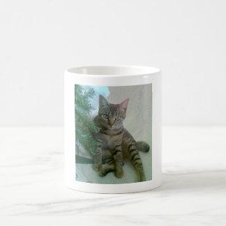 Tazas lindas personalizadas del gato