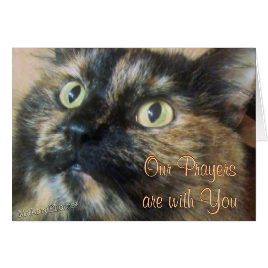 Tazzie Cat Prayer card-customize any occasion Card