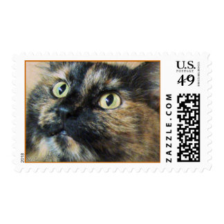 Tazzie-clupStamp Postage Stamps