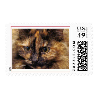 Tazzie-or your cat postage