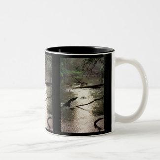 Tchefuncte Glimmer Mug