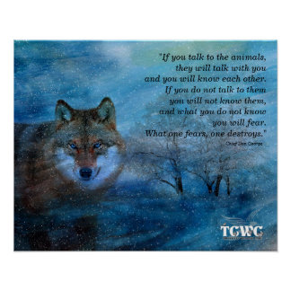 TCWC - 16x20 Blue Wolf Christmas with Quote Poster