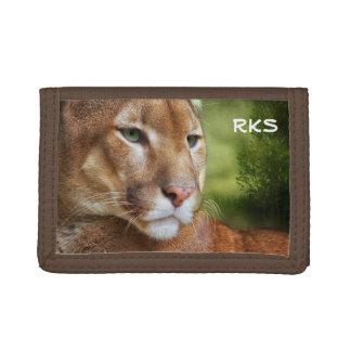 TCWC - Arte del león de montaña del puma