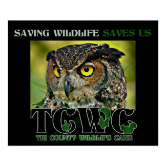 TCWC - Great Horned Owl Logo and Mission Poster