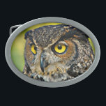"""TCWC - Great Horned Owl Oval Belt Buckle<br><div class=""""desc"""">Beautiful Great Horned Owl portrait. Great belt buckle for the person who loves owls. Digitally enhanced photograph courtesy of Peter Manidis at Wiki Commons. All royalties and referrals received by PawsPartners.org from the sale of this product, will be donated by PawsPartners.org to Tri County Wildlife Care. Visit PawsPartners.org to learn...</div>"""