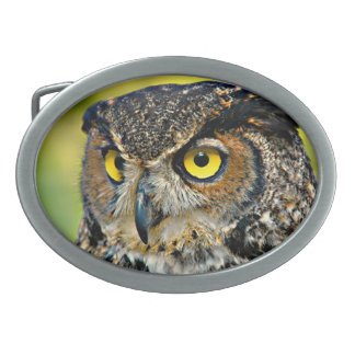 TCWC - Great Horned Owl Oval Belt Buckle