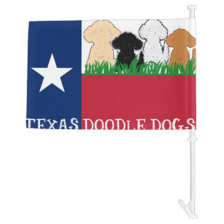 TDD banner car flag