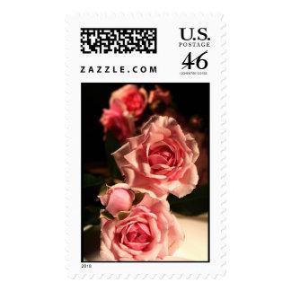 TDSwhite Pink Roses Wedding Stamp