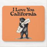 Te amo abrazo de oso de California Alfombrilla De Ratón