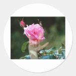 Te amo color de rosa pegatina redonda
