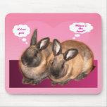 Te amo conejos de conejito de la tarjeta del día d tapetes de raton