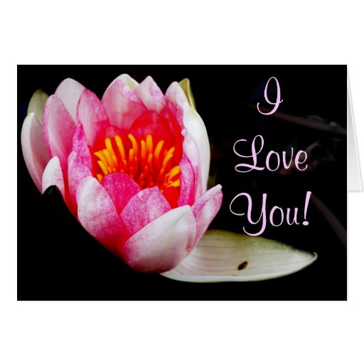 ¡Te amo! Felicitacion