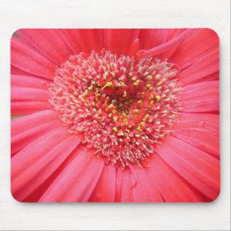 Te amo flor mousepad