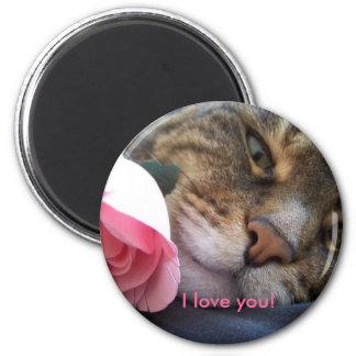 ¡Te amo! imán del gatito