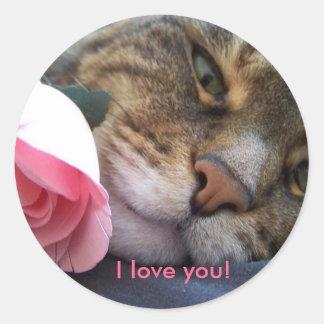 Te amo pegatina del gato
