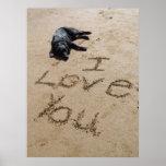 Te amo poster de la playa y del perro enorme