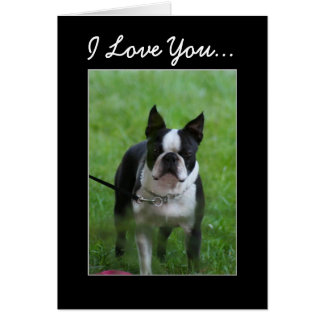 Te amo tarjeta de felicitación de Boston Terrier