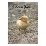 Te amo tarjeta de felicitación del anadón