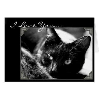 Te amo tarjeta de felicitación del gato negro