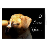 Te amo tarjeta de felicitación del perrito del box