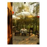 Té de la tarde por la arboleda de bambú postales
