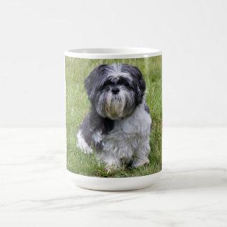 Té lindo de la foto de shih del perro lindo del taza de café