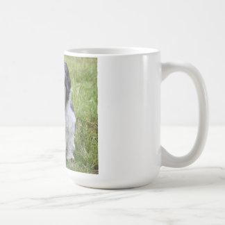 Té lindo de la foto de shih del perro lindo del tz tazas de café
